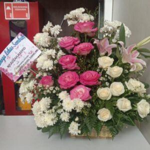 Bunga Meja Lekas Sembuh